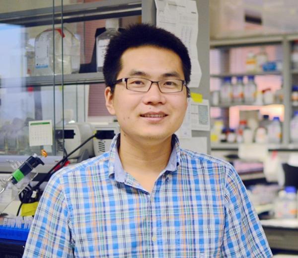 Guolin Ma